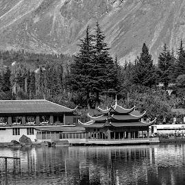 by Mohsin Raza - Black & White Landscapes