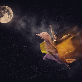 fly me to the moon by Ronald Santoso - Digital Art People