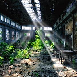 by Vukosava Radenovic - Buildings & Architecture Decaying & Abandoned