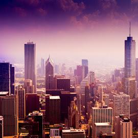 Chicago Skyline by John Guest - City,  Street & Park  Skylines ( chicago skyline, chicago )