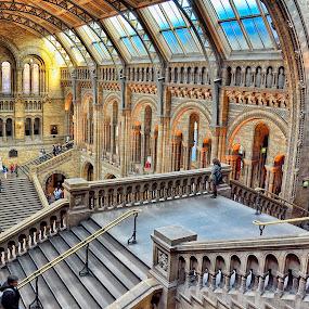 by Gabriel Tocu - Buildings & Architecture Public & Historical ( interior, building, architecture, museum, historical,  )