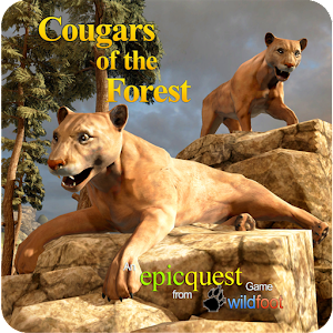Cougars of the Forest