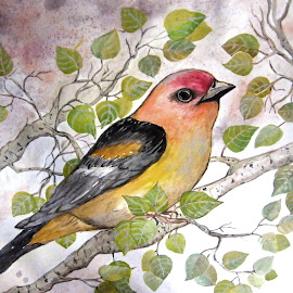 by Vesna Disich - Painting All Painting ( bird, watercolor, vesna disich, europe, nature, tenderness, serbia, poetical, spting, bitd )