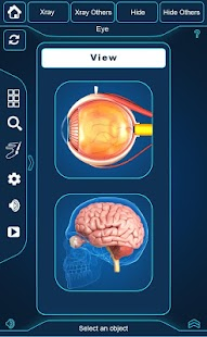 My Eye Anatomy screenshot for Android