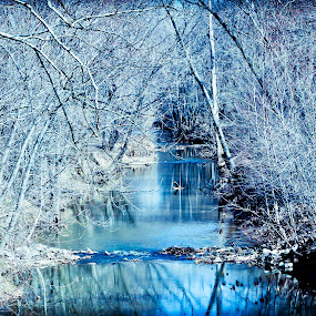 by Eric Bott - Landscapes Waterscapes