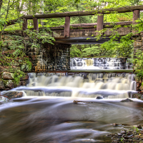 At Hickory Run State Park by Dave Martin - Nature Up Close Water