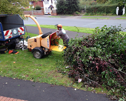 paul jackson at work removing a hedge