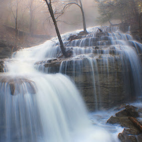 MORNING MIST by Dana Johnson - Landscapes Waterscapes ( waterfalls, fog, waterscape, cascade, morning, landscape, mist )