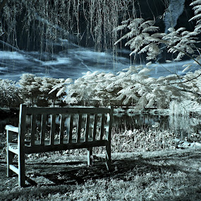 Adventures In IR by Jeremy Barton - Landscapes Travel