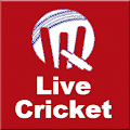 Free FlipScore for Cricket APK for Windows 8