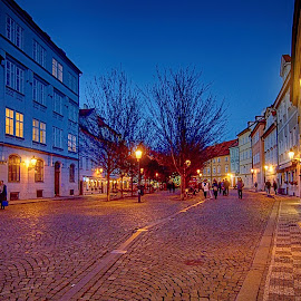 Kampa by Jiri Cetkovsky - City,  Street & Park  Night ( kampa, blue hour, street, night, prague )