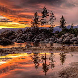Tahoe Sunset Reflections by Lee Molof - Landscapes Waterscapes