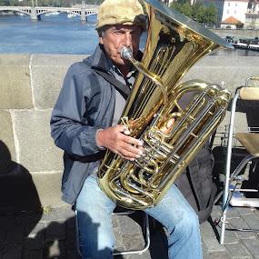 Jazzman by Luboš Zámiš - People Musicians & Entertainers