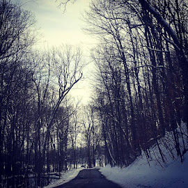 Country Road by Suzette Christianson - Transportation Roads