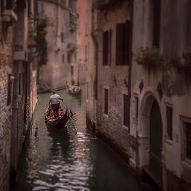 Venice by Ole Steffensen - Transportation Boats ( venezia, gondola, venice, boat, canal, italy )