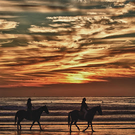 Horses at sunset by Chris Seaton - People Street & Candids ( cloudy, ocean, beach, sunset, horses )
