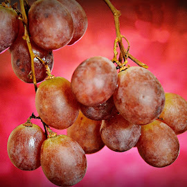 Grapes by Prasanta Das - Food & Drink Fruits & Vegetables ( red, grapes, bunch )