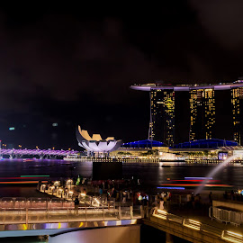 Merlion Park Night Scene by Lye Danny - City,  Street & Park  Skylines