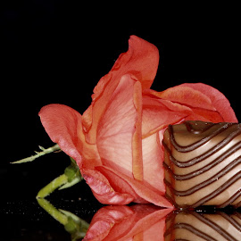 by Eva Doe (Antonija Kodžoman) - Food & Drink Candy & Dessert