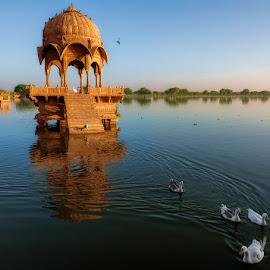Leisure in Lake Gadisar by Manabendra Dey - City,  Street & Park  City Parks ( jaisalmer, structure, blue, gadisar, ducks, lake, mid-day )