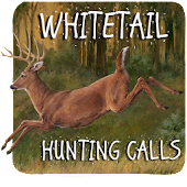 Whitetail Hunting Calls APK for iPhone