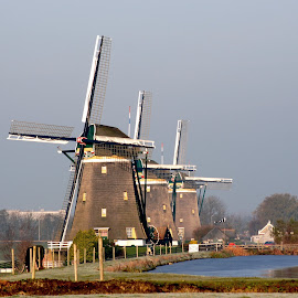 Three on a row by Nico Kranenburg - Buildings & Architecture Other Exteriors ( water, holland, landscape, windmill,  )