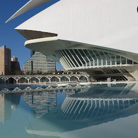 Opera house, Valencia by Luis Felipe Moreno Vázquez - City,  Street & Park  Street Scenes ( water, buildings, reflections, architecture, opera house, spain, calatrava )