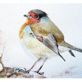 Sad robin by Jasna Dragun - Painting All Painting ( bird, watercolor, nature, painting )