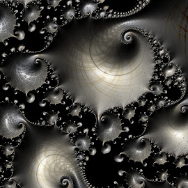 Silver Shells by Amanda Moore - Illustration Abstract & Patterns ( digital art, fractal art, fractal, digital, fractals )