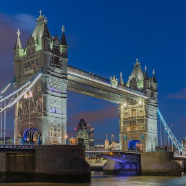 Majestic Tower Bridge by Augustin Galatanu - Buildings & Architecture Bridges & Suspended Structures ( blue hour, tower bridge, landscape, the gherkin )