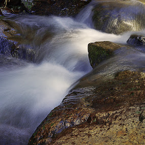 Stagg Creek  by Danny Bruza - Nature Up Close Water