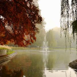 by Pe Tra - City,  Street & Park  City Parks