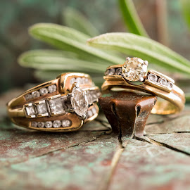 Rings of Love by Becky Kempf - Artistic Objects Jewelry ( diamonds, jewelry, rings, gold, engagement ring )