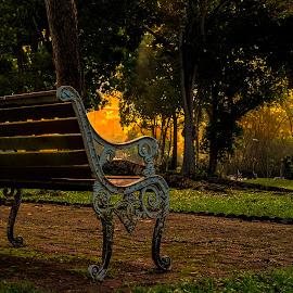 Alone by Gordon Koh - City,  Street & Park  City Parks