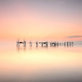 SUNRISE @ BUNTAL by Sim Sherina - Landscapes Waterscapes ( earth ·sunrise ·landscapes  ·inspirational ·, horizon ·scenic ·morning ·, sun ·photography ·farm ·love ·nature ·,  )