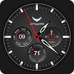 Skymaster Pilot Watch Face Icon