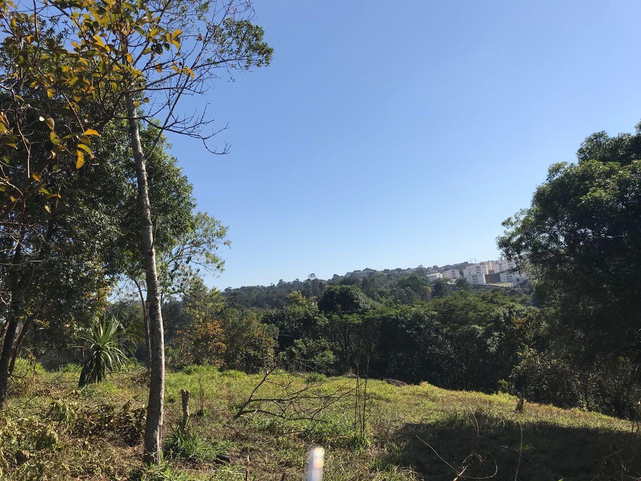 Terreno à Venda - Jardim Sandra