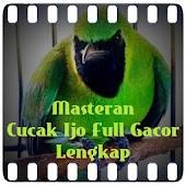 Masteran Cucak Ijo Full Gacor APK for Bluestacks