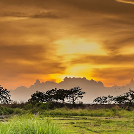 Waiting for Passage by Ynon Francisco - Landscapes Prairies, Meadows & Fields ( clouds, farm, sunset, ricefield, goldenhour, philippines, tarlac )