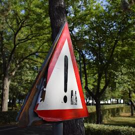 Caution by Ciprian Pavelescu - City,  Street & Park  City Parks ( ploiesti, autumn, olimpia park, romania, running )