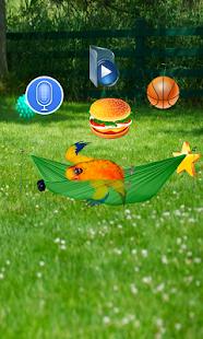 App Funny Talking Parrot APK for Kindle