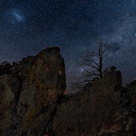 dead of night by Bruce Newman - Landscapes Mountains & Hills ( rocks, dead tree, night, stars, landscape,  )