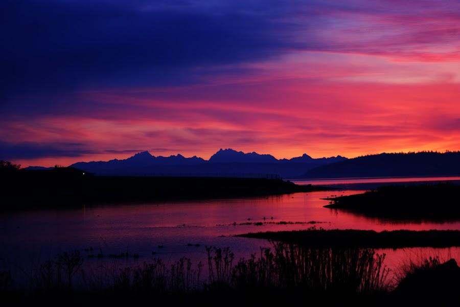 Penn Cove Sunrise by Kevin Sullivan - Landscapes Travel ( washington, mountains, whidbey island, cascades, northwest, sunrise, wa, penn cove )