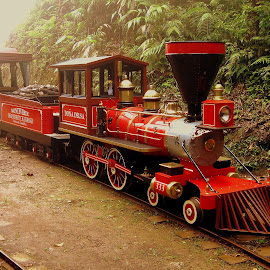 by Steve Tharp - Transportation Trains ( costa rica )