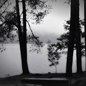 rainy by Gunarsa Gunarsa - Digital Art Places ( black and white photograpy, situ patengan, fine art, lake, ciwidey )