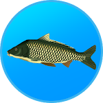 True Fishing 1.10.0.447