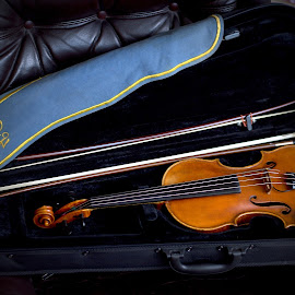 housle by Helena Jirasová - Artistic Objects Musical Instruments ( housle )
