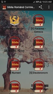 Romanian Bible Version - screenshot