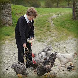boy and chickens by Caroline Beaumont - Babies & Children Children Candids ( boy and chickens )