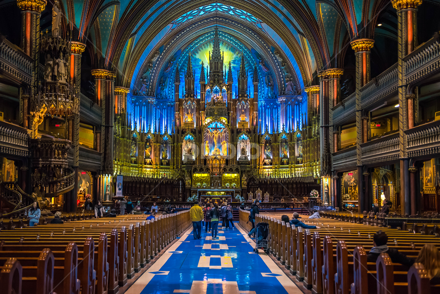 Notre dame by Darren Sutherland - Buildings & Architecture Places of Worship ( montreal, montreal.quebec city )